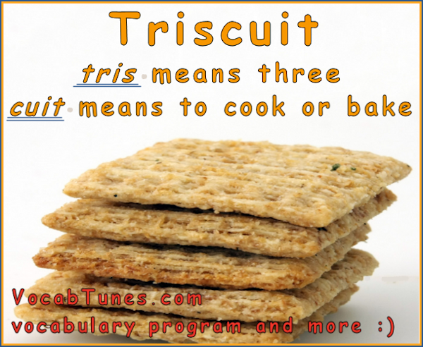 the meaning of the word triscuit and biscuit